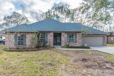 Single Family Home For Sale: 312 Constitution Drive