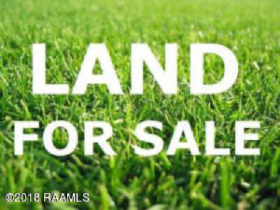 Opelousas Farm For Sale: Hwy 178