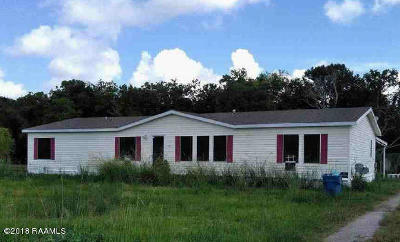 Carencro Single Family Home For Sale: 130 Owl Lane