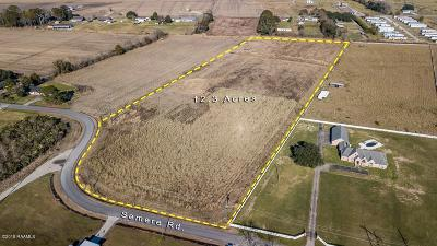 Farm For Sale: Tbd Semere Road