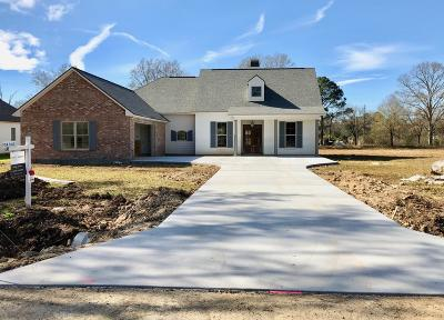 Carencro Single Family Home For Sale: 116 Kate
