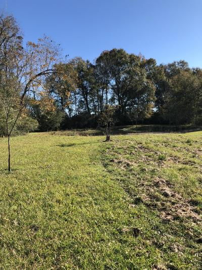 East Baton Rouge Parish Residential Lots & Land For Sale: Tbd Bon Dickey Drive