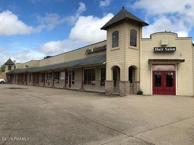 Commercial For Sale: 504 Guilbeau Road #C