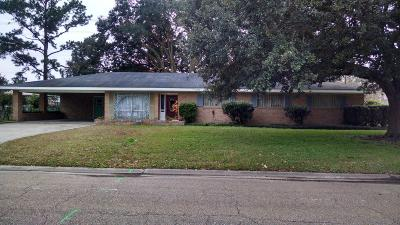 Single Family Home For Sale: 501 Colonial Drive