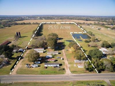 St Landry Parish Farm For Sale: 5413 Hwy 182
