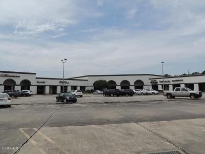 Lafayette Parish Commercial Lease For Lease: 5520 Johnston Street #D