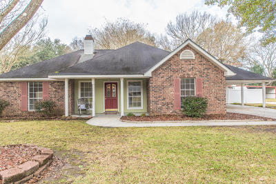 Carencro Single Family Home For Sale: 115 Dayna Drive
