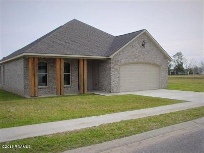 St Martinville, Breaux Bridge, Opelousas Single Family Home For Sale: 176 Imperial Saint Landry Avenue