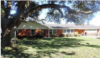 St Martinville, Breaux Bridge, Abbeville Single Family Home For Sale: 506 W St Mary Street
