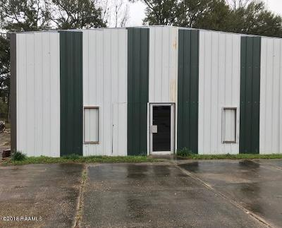 Lafayette Commercial For Sale: 220 Tubing Road