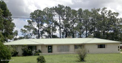 Opelousas Single Family Home For Sale: 117 Emile Street