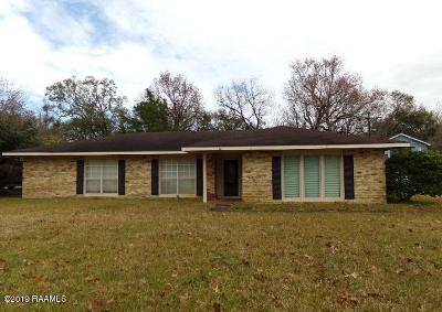 Abbeville Single Family Home For Sale: 510 Perry Drive