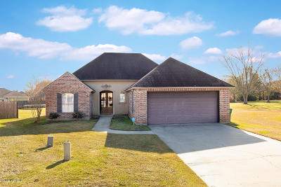 broussard Single Family Home For Sale: 217 Treat Drive