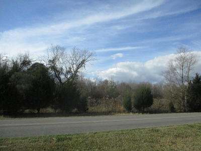 Evangeline Parish Residential Lots & Land For Sale: 1649 Green Valley Road