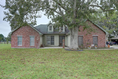 New Iberia Single Family Home For Sale: 154 Plantation Drive