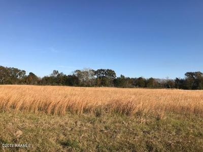 Washington Residential Lots & Land For Sale: John Fruge Road