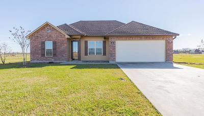 St Martinville, Breaux Bridge, Opelousas Single Family Home For Sale: 520 Montgomery Road