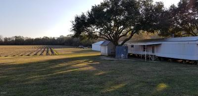 Iberia Parish Single Family Home For Sale: 4517 Captain Cade Road