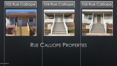 Carencro Multi Family Home For Sale: 104 Rue Calliope