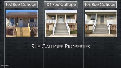 Carencro Commercial For Sale: 102 Rue Calliope