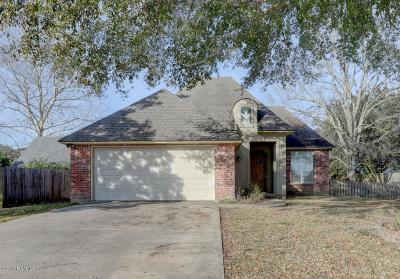 Youngsville Single Family Home For Sale: 102 Thorn Drive
