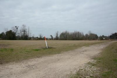 Youngsville LA Residential Lots & Land For Sale: $335,000