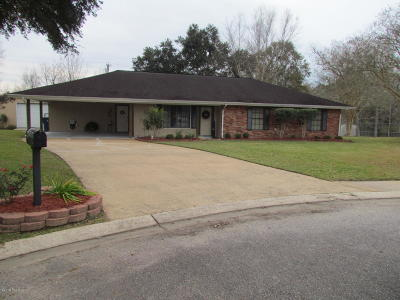 Single Family Home For Sale: 2434 Herbert Drive