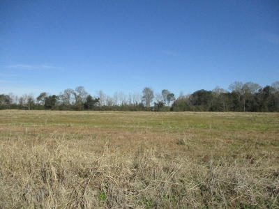 Evangeline Parish Residential Lots & Land For Sale: Tbd Prudhomme Lane