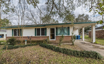 Single Family Home For Sale: 214 Belle Dame Drive