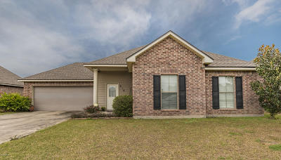 Single Family Home For Sale: 219 Oak Hill Lane