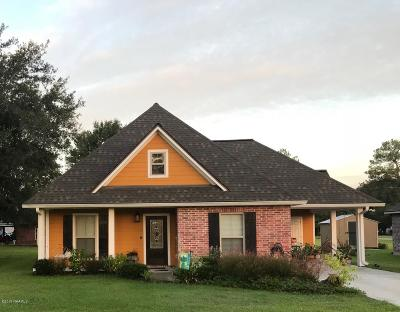 Single Family Home For Sale: 1011 Alida Street