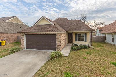 Single Family Home For Sale: 219 Oak Path Drive