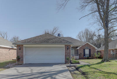 Single Family Home For Sale: 201 Bismark Drive