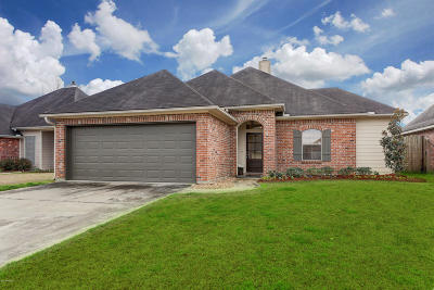 Single Family Home For Sale: 704 Copper Meadow Boulevard