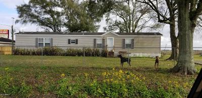 Jeanerette Single Family Home For Sale: 127 Fortier Rd