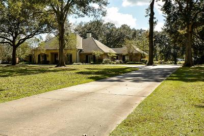 Abbeville Single Family Home For Sale: 8317 River Road