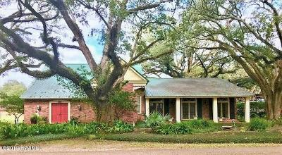 Mamou Single Family Home For Sale: 401 Maple Street