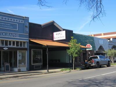 Iberia Parish Commercial For Sale: 108 E Main Street Street