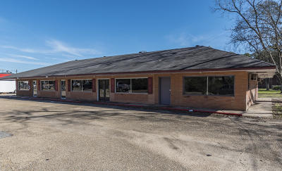 Evangeline Parish Commercial For Sale: 201 Tate Cove Road