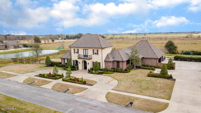 Single Family Home For Sale: 2905 Blue Wing