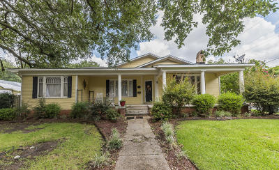 St Martinville, Breaux Bridge, Opelousas Single Family Home For Sale: 704 S Court Street