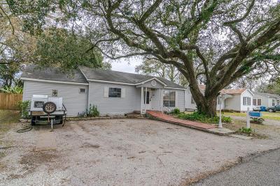 Single Family Home For Sale: 110 Norine Street