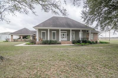 Abbeville Single Family Home For Sale: 11325 Bamboo Road