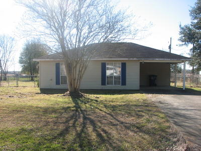 Opelousas Single Family Home For Sale: 238 Ave Of The Acadians