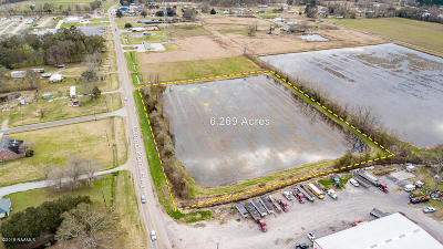 Breaux Bridge Farm For Sale: Tbd Grand Point Hwy