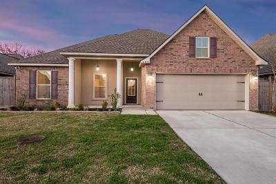 Broussard Single Family Home For Sale: 227 Lexi Falls Lane