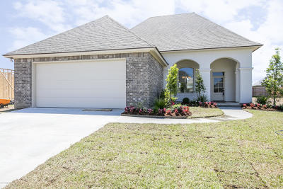 Broussard Single Family Home For Sale: 614 Easy Rock Landing Drive