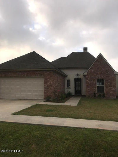 Single Family Home For Sale: 143 Pinnacle Drive