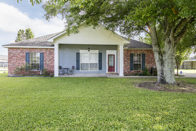 Opelousas Single Family Home For Sale: 203 Campbell Drive