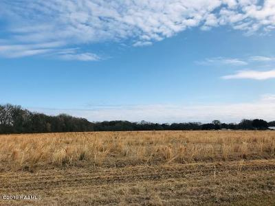 Acadia Parish Farm For Sale: Tbd E Plaquemine Street